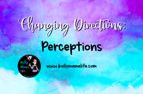 definition of perception. #bullymamalife www.bullymmalife.com